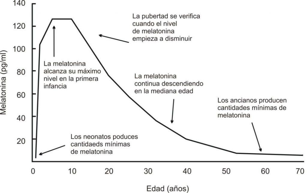 melatonina edad
